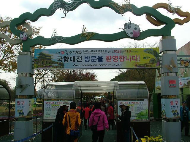 함평꽃축제004.JPG